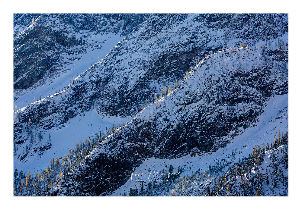 Morning sunlight highlights the ridges and larches after an early season snowfall as autumn changes to winter