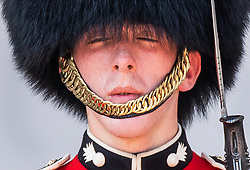 © Licensed to London News Pictures. 25/07/2019. London, UK. Sweat drips off the chin of a Guardsmen of the Nijmegen Company of the Grenadier Guards feels the heat as he stands on duty outside Buckingham Palace in central London. Today is expected to be another hot day with record breaking temperatures in parts of the UK  Photo credit: Peter Macdiarmid/LNP