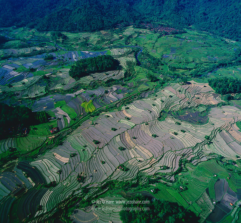 Agriculture in the foothills of Mt. Agung, Bali, Indonesia.