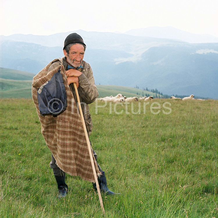 Portrait of a shepherd in the Carpathian Mountains, Romania. His shepherd's hat and cloak, a handwoven checked woollen blanket are particular to the Brasov region. Shepherd's hats are totally handmade. The interior should be white and it should hold water so that the shepherd can use it to collect water from streams to wash in when he's up in the mountains.