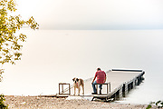 Josephine, a Saint Bernard, standing on the dock at Woods Bay public boat launch with her human
