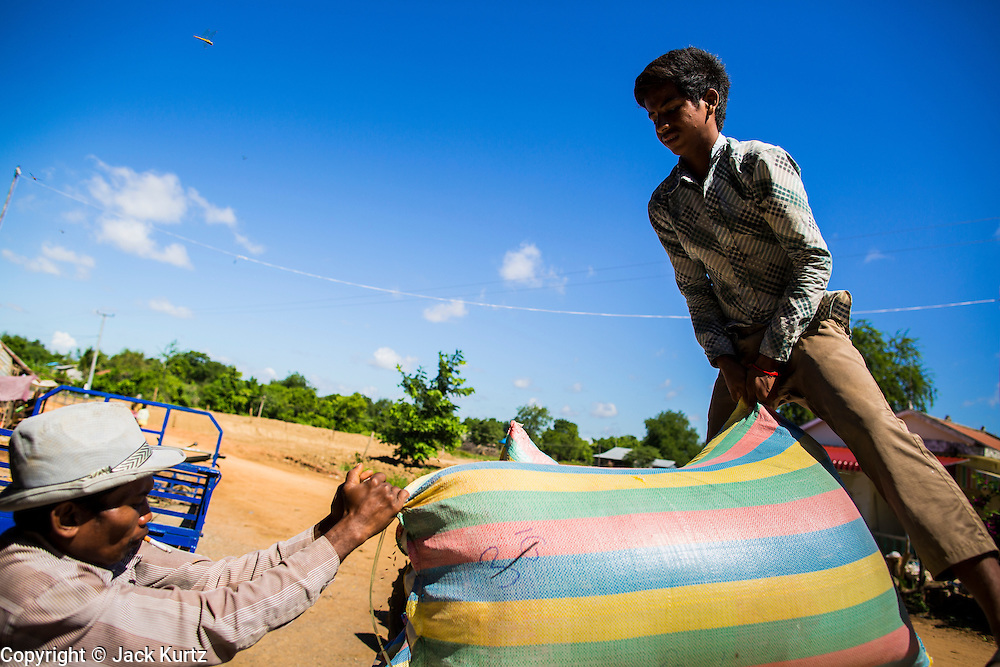 """29 JUNE 2013 - BATTAMBANG, CAMBODIA:   Workers at a rice mill load bags of milled rice onto a tractor. The mill is next to the tracks that carry the """"bamboo trains."""" The bamboo train, called a norry (nori) in Khmer is a 3m-long wood frame, covered lengthwise with slats made of ultra-light bamboo, that rests on two barbell-like bogies, the aft one connected by fan belts to a 6HP gasoline engine. The train runs on tracks originally laid by the French when Cambodia was a French colony. Years of war and neglect have made the tracks unsafe for regular trains.  Cambodians put 10 or 15 people on each one or up to three tonnes of rice and supplies. They cruise at about 15km/h. The Bamboo Train is very popular with tourists and now most of the trains around Battambang will only take tourists, who will pay a lot more than Cambodians can, to ride the train.       PHOTO BY JACK KURTZ"""