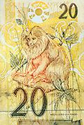 Being the most popular of the four species of Lion Tamarins in Brasil the Golden Lion Tamarin is even depicted on the 20 Real note.  | Als populärste der vier verschiedenen Löwenäffchen-Arten ist das Goldgelbe Löwenäffchen sogar auf der 20 Real-Banknote Brasiliens abgebildet.