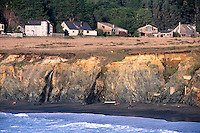 A young boy flies a kite on a beach at the community of Sea Ranch, California.