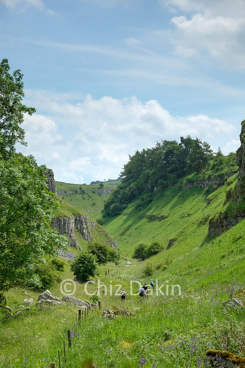 Exiting the narrow rocky area leads to a steep-sided narrow but grassy valley