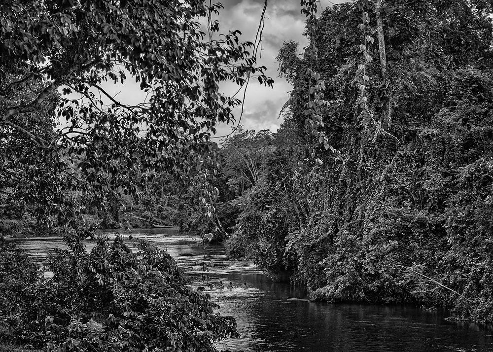 Trois-Sauts, Guyane, 2015.<br /> <br /> Étendue sur 10 030 km², la commune amérindienne de Camopi est composée de 1 623 habitants répartis en plusieurs zones de vie : le bourg et ses écarts le long de la rivière Camopi,  Trois-Sauts et ses villages, à l'extrême sud de la Guyane, le long de l'Oyapock. L'autorisation préfectorale nécessaire pour se rendre dans cette zone réservée depuis 1970 a  été  supprimée  en  juin  2013 pour accéder au bourg de Camopi mais reste obligatoire pour remonter l'Oyapock jusqu'à Trois-Sauts. Plus de 600 amérindiens Wayãmpi y vivent dans des villages accessibles uniquement par voie fluviale, aucune route ne les reliant au reste du département. Lorsque les eaux sont basses, il faut jusqu'à deux jours de pirogue pour les rejoindre depuis le bourg ou cinq jours de navigation depuis Saint-Georges de l'Oyapock à deux cents kilomètres en aval.