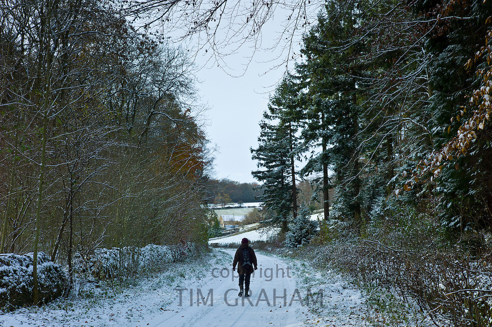 Walker in country lane in frosty wintry landscape in The Cotswolds, Oxfordshire, UK