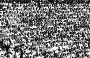 Crowd of people sitting in a stadium.