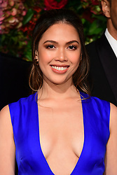 Christine Allado attending the Evening Standard Theatre Awards 2018 at the Theatre Royal, Drury Lane in Covent Garden, London