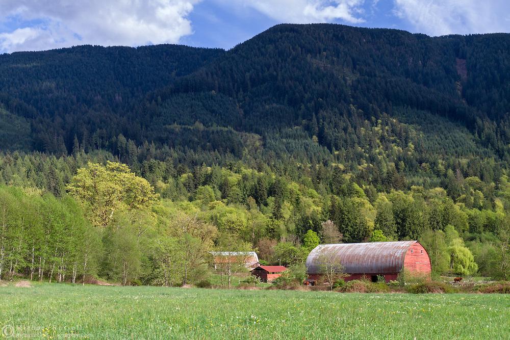 Durieu farmland and barns on Hatzic Prairie, British Columbia, Canada