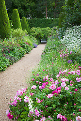 The Rose Walk with Rosa mundi in the foreground
