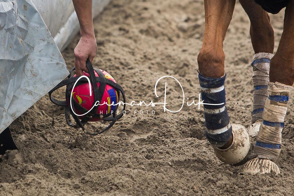 Augustyns Michael, BEL, Petite Biche, <br /> BK Horseball 2018<br /> © Sharon Vandeput<br /> 14:16:09