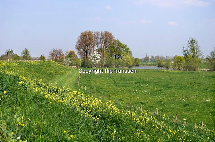 Nederland, Passewaay, 15-4-2019 In de uiterwaard van Passewaay bij Tiel is een nevengeul van de Waal uitgegraven. Natuurontwikkelingsgebied Wetland Passewaaij wordt beheerd door staatsbosbeheer. Foto: Flip Franssen