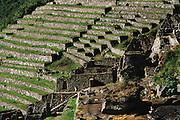 Terraces at Inca ruins at Machu Picchu, Peru.