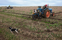 © Licensed to London News Pictures. <br /> 30/11/2014. <br /> <br /> Boulby, United Kingdom<br /> <br /> Competitos begin to plough at the start of the ploughing match that takes place each year on fields next to the picturesque Yorkshire coastline near Staithes. Farmers attend each year to demonstrate their ploughing skills and to help raise money for charity with proceeds from this year going to Charlie Brown Cancer Care in Newcastle.<br /> <br /> <br /> Photo credit : Ian Forsyth/LNP