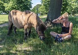 Licensed to London News Pictures. 14/06/2021. London, UK. Fudge a miniature Shetland pony cools off in the shade with its handler Nadia Power on Wimbledon Common southwest London today. Weather experts have forecast very warm weather for the next few days for the South East and London with temperatures predicted to hit up to 30c. Photo credit: Alex Lentati/LNP