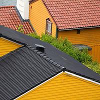 Europe, Norway, Bergen. Roofs of Bergen.