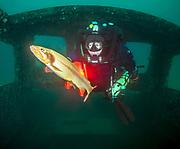 KISS Spirit rebreather diver inside the wreck Silver Comet at Dutch Springs, Scuba Diving Resort in Pennsylvania