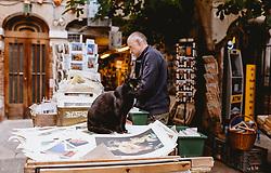 THEMENBILD - eine schwarze Katze sitz vor einer historische Bücherei und Buchhandlung in der Altstadt, aufgenommen am 04. Oktober 2019 in Venedig, Italien // a black cat is sitting in front of the historical library and bookshop in the old town, in Venice, Italy on 2019/10/04. EXPA Pictures © 2019, PhotoCredit: EXPA/Stefanie Oberhauser