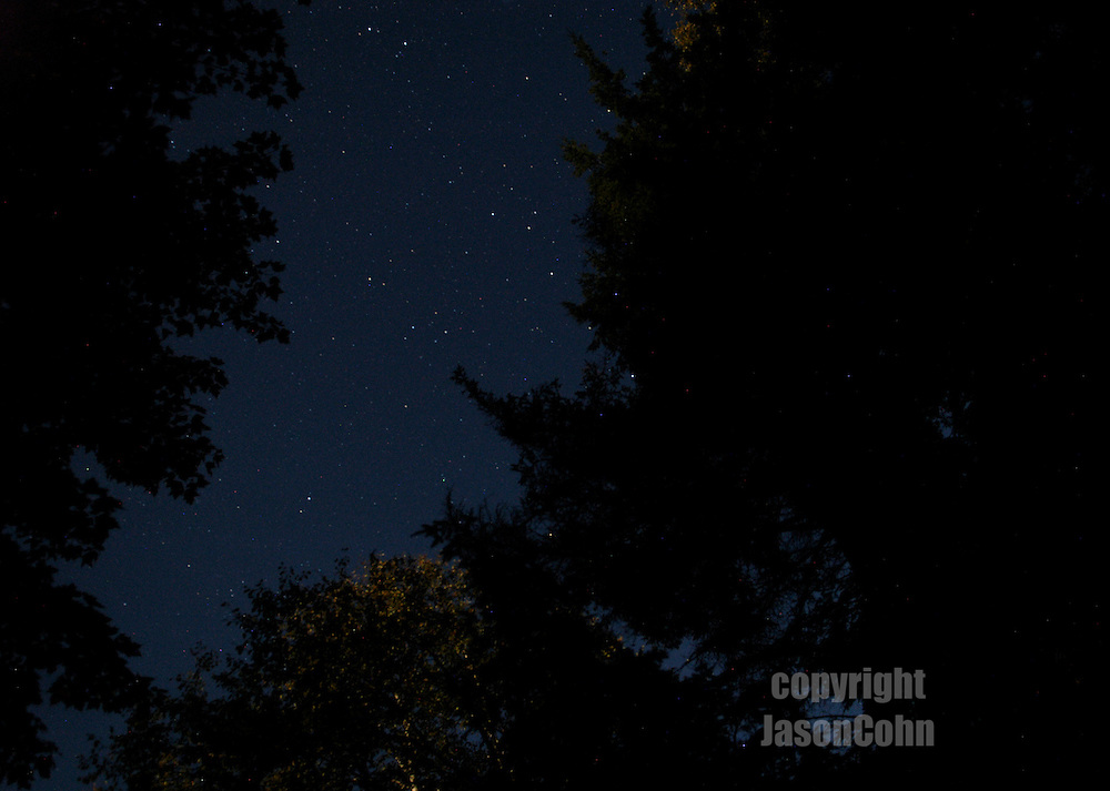 A starlit sky in the Adirondacks. Photo by Jason Cohn
