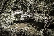 Stock photograph of the Sacred Cenote (Cenote Sagrado) at the Chichen Itza world heritage site, Yucatan, Mexico