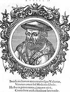 Leonhard Fuchs (1501-56) German botanist and physician. Fuchsia named after him. Woodcut