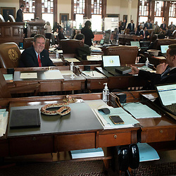 Lawmakers crack up Tuesday morning as the fake snake incident hits the desk of Rep. tracy King while Rep. Jeff Leach (on the floor) films.