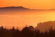 Fog rolls into SF Bay at sunset, from Berkeley Hills, CALIFORNIA