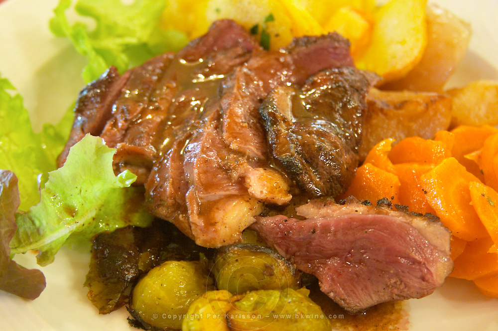 A plate with duck breast magret de canard, salad and vegetables. Ferme de Biorne duck and fowl farm Dordogne France Workshop on how to make foie gras duck liver pate and other conserves