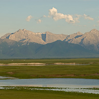 MONGOLIA.  Pastures and river in southern Darhad Valley in the  Hovsgol district.  Horidal Saridag Mountains bkg.
