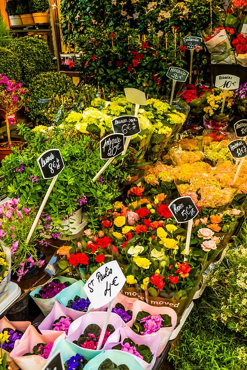 Flowers at a florist shop, Rue Cler street market, Paris, France.