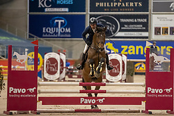 Gielis Davy, BEL, Qascorrado 1919 Z<br /> Pavo Hengsten competitie - Oudsbergen 2021<br /> © Hippo Foto - Dirk Caremans<br />  22/02/2021