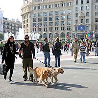 Europe, Spain, Barcelona. A couple walks dogs amongst shoppers in Barcelona.