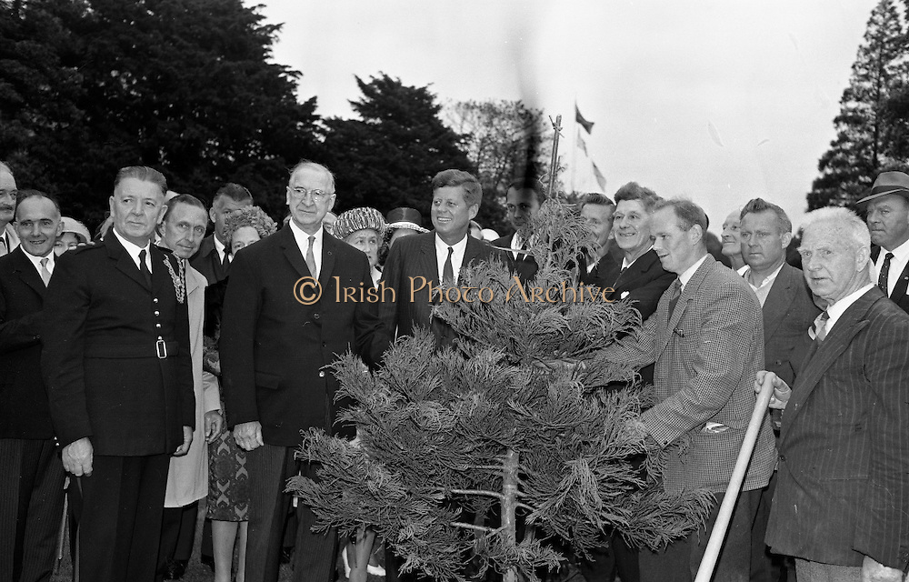 President John F. Kennedy attends a Garden Party at Aras an Uachtarain.  Kennedy plants a Californian Redwood in the grounds of the residence, watched by President de Valera and Mr. Frank Aiken, Minister for External Affairs (left)..27.06.1963