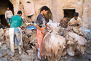 Workers at the Berber leather tannery in Fes El-Bali, Morocco, carve and clean the edges of sheep skins on October 31, 2007.