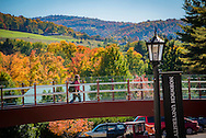 Photos of the scenic fall campus and foliage