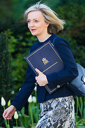 Downing Street, London, April 25th 2017. Justice Secretary and Lord Chancellor Liz Truss attends the weekly cabinet meeting at 10 Downing Street in London. Credit: ©Paul Davey