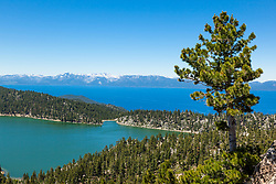 """""""Marlette Lake and Lake Tahoe 2"""" - Photograph of both Marlette Lake and Lake Tahoe with a pine tree in the foreground."""