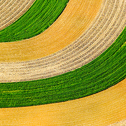 Aerial view of  Farm abstract