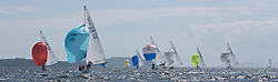 International Dragon Class Scottish Championships 2015.<br /> <br /> Day 1 racing in perfect conditions.<br /> <br /> Fleet downwind with GBR 515, Basilisk<br /> <br /> <br /> Credit Marc Turner
