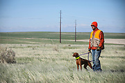 SHOT 5/9/20 8:50:09 AM - Various pointing breeds compete in the Vizsla Club of Colorado Licensed Hunt Test Premium at the Rocky Mountain Sporting Dog Club Grounds in Keenesburg, Co. (Photo by Marc Piscotty / © 2020)