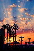 Israel, Tel Aviv, Mediterranean sun set with Palm trees