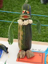 Vegetable competition at Meadows Community Gardens, Nottingham, England