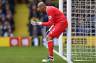 Goalkeeper Heurelho Gomes of Watford looking on. Premier league match, Watford v AFC Bournemouth at Vicarage Road in Watford, London on Saturday 1st October 2016.<br /> pic by John Patrick Fletcher, Andrew Orchard sports photography.