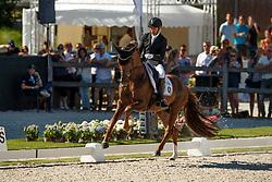 Jurado Lopez Severo, ESP, D'Avie<br /> World ChampionshipsYoung Dressage Horses<br /> Ermelo 2018<br /> © Hippo Foto - Stefan Lafrentz<br /> 05/08/2018