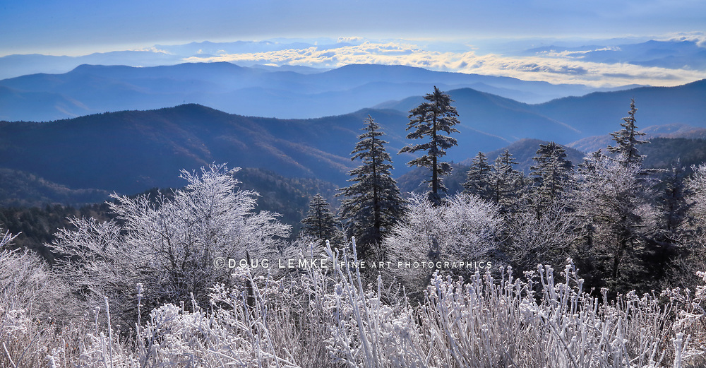 The first light of dawn on a snowy morning at Clingman's Dome in The Great Smoky Mountains National Park, Tennessee - North Carolina, USA