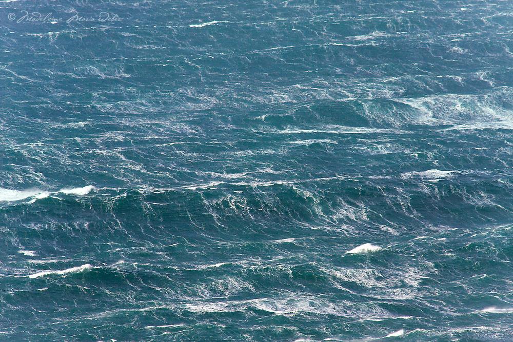 Wild stormy Sea / sm002