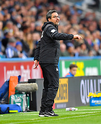 Huddersfield Town manager David Wagner gestures on the touchline during the Premier League match at the John Smith's Stadium, Huddersfield.