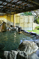 Sunset Hills Hot Springs, Izu Hot spring or onsen bathing is a popular form of entertainment and relaxation for the Japanese.