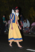 Snow White at Glastonbury and Chilkwell Guy Fawkes Carnival, 2013.